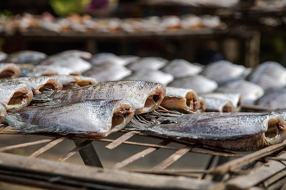 ปลาสลิด ราคาถูก ร้านไหนดี
